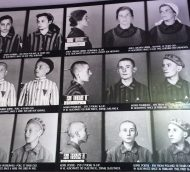 Auschwitz Concentration Camp:  Now and Then