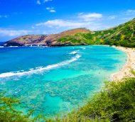 $318 Minneapolis to Honolulu